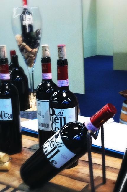 Visite e degustazione vini 1