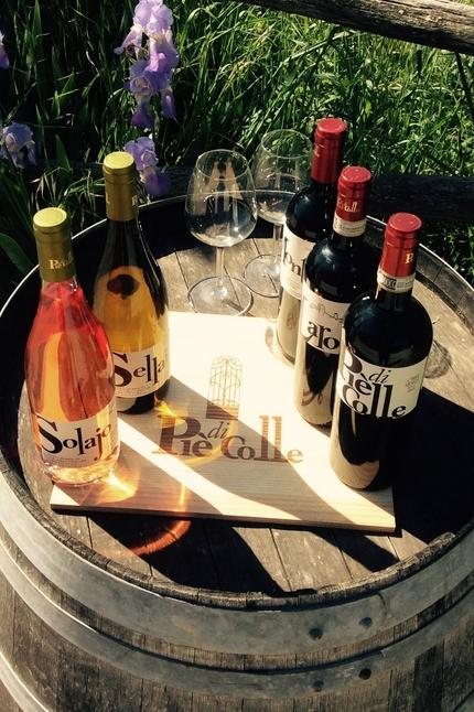 """""""Piè di Colle"""" azienda vinicola - vini toscani Chianti DOCG e IGP 26"""