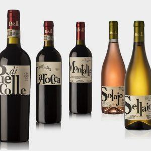 """""""Piè di Colle"""" azienda vinicola - vini toscani Chianti DOCG e IGP 29"""