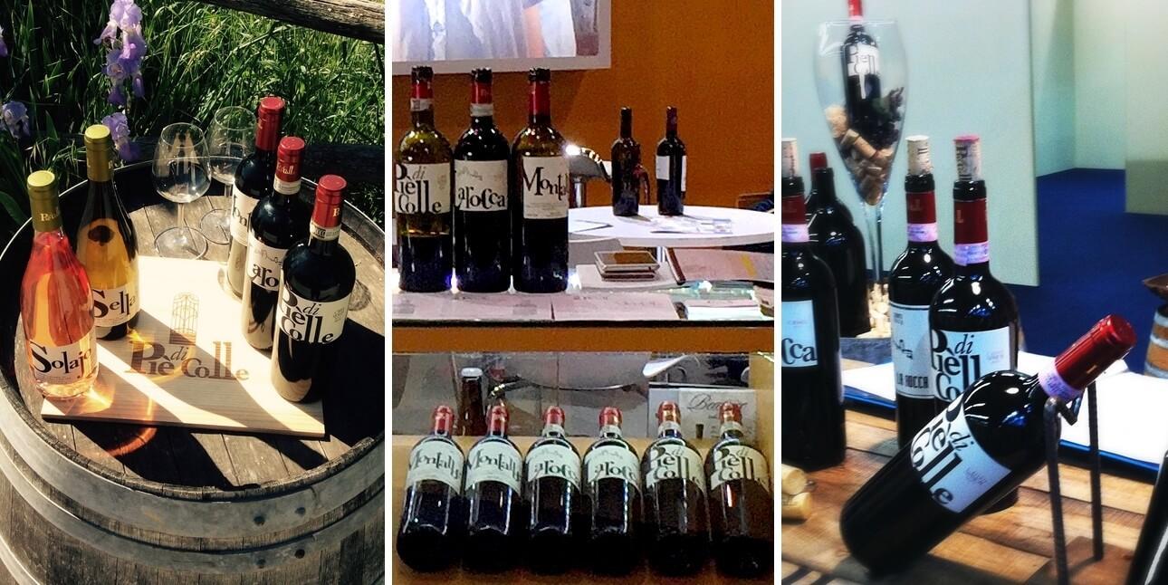 """Chi siamo: Informazioni sull'azienda vinicola """"Piè di Colle"""" 16"""