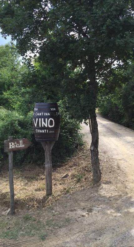 La Val di Chiana: l'area dove produciamo i nostri vini 5