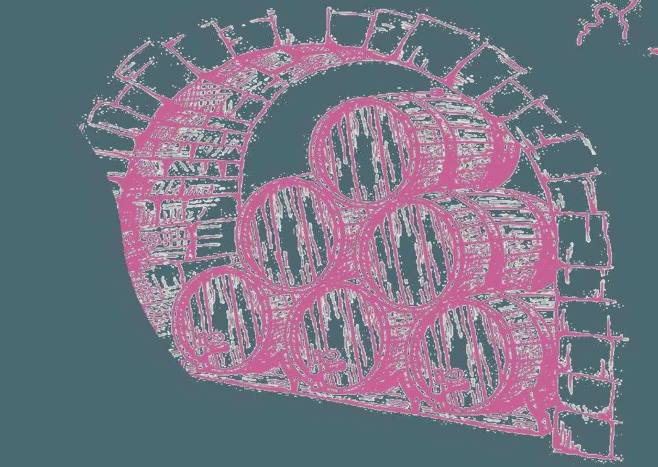La cantina di Piè di Colle: maturazione e degustazioni vini 1