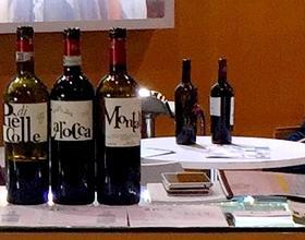Gallery: immagini su Piè di Colle azienda vinicola toscana 20