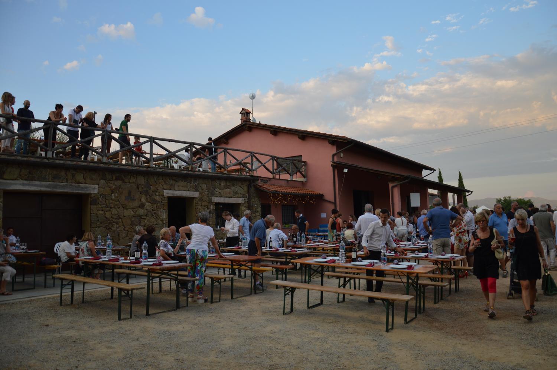 Gallery: immagini su Piè di Colle azienda vinicola toscana 61