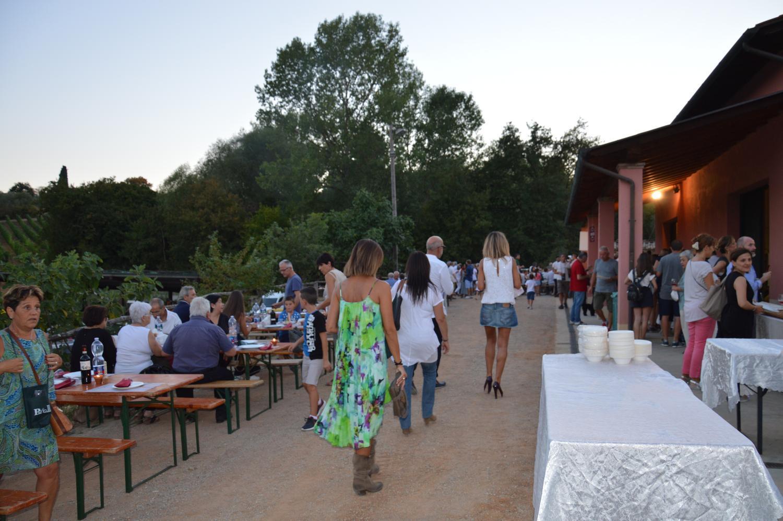Gallery: immagini su Piè di Colle azienda vinicola toscana 62