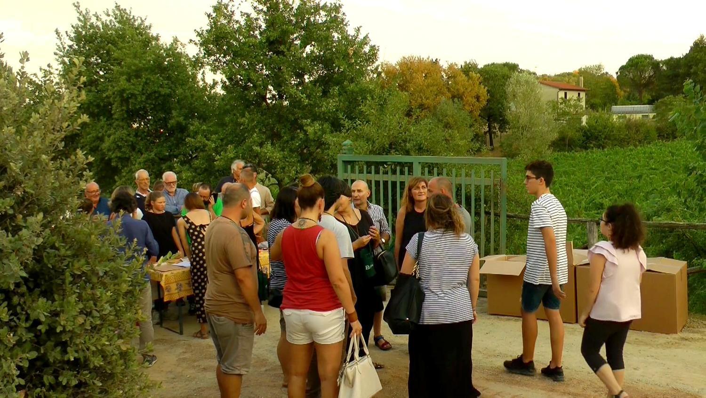 Gallery: immagini su Piè di Colle azienda vinicola toscana 57
