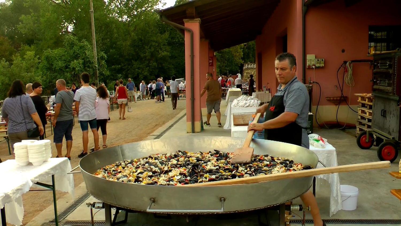 Gallery: immagini su Piè di Colle azienda vinicola toscana 58